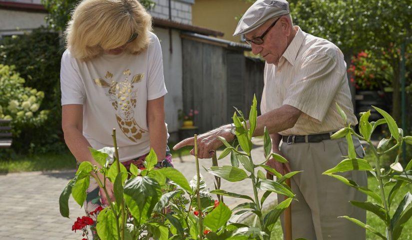 starszy pan z opiekunką w ogrodzie